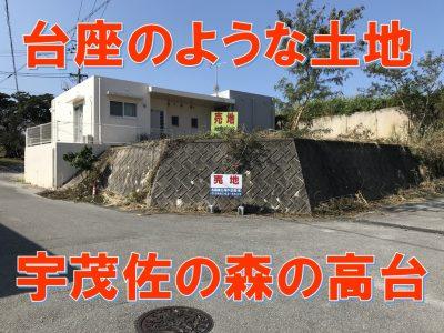 名護市 宇茂佐の森三丁目55.20坪