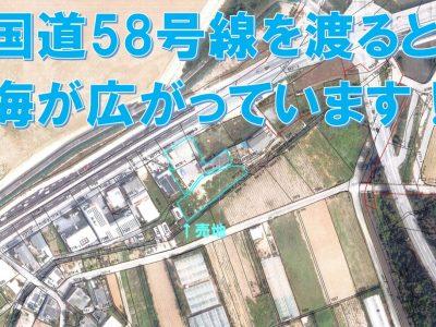 恩納村 恩納533.79坪