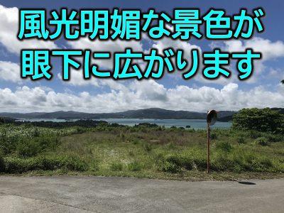 今帰仁村 湧川446.79坪
