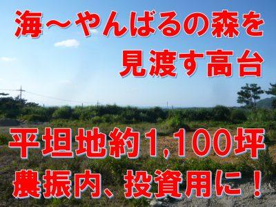大宜味村 白浜4223.80坪