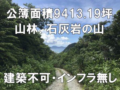 名護市 安和9413.19坪の石山(◆鉱業権設定済み)